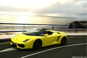 Yellow_Spyder